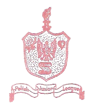Polish Junior League